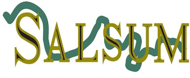 SALSUM - Arqueología y Turismo